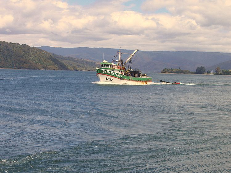 Puerto Corral Valdivia